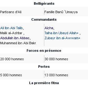 Bataille du chameau 9 dec 656
