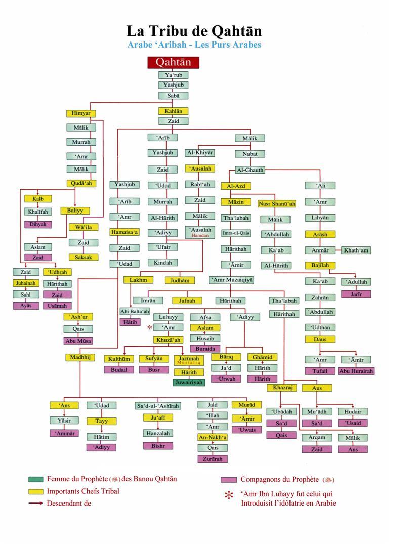 Genealogie de qahtan