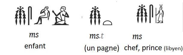 Hieroglyphe efant pirnce pagne