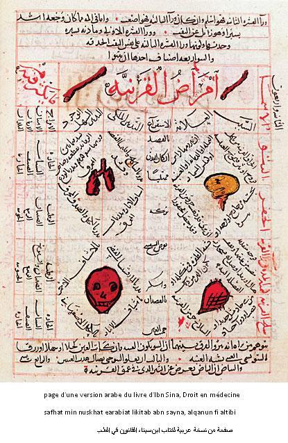 Ibn sina livre de medecine
