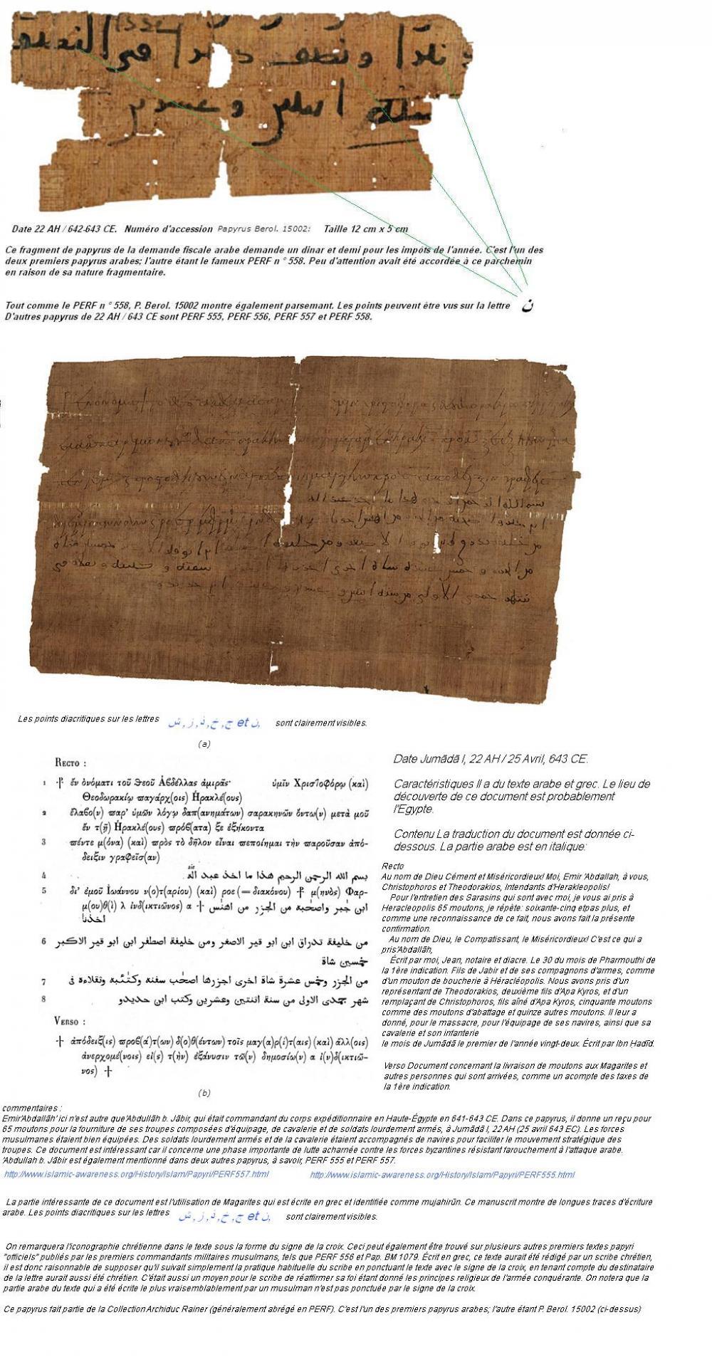 Papyrus arabe1