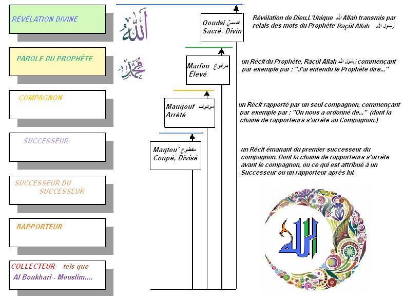 Selon la reference d une autorite particuliere quatre types de hadith peuvent etre identifies